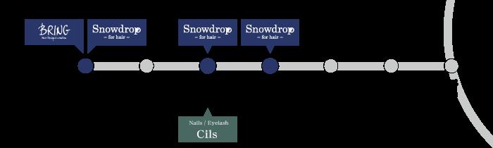 Snowdrop 新宿からのアクセス