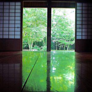 2017夏の京都。新緑がきれいなおすすめスポット